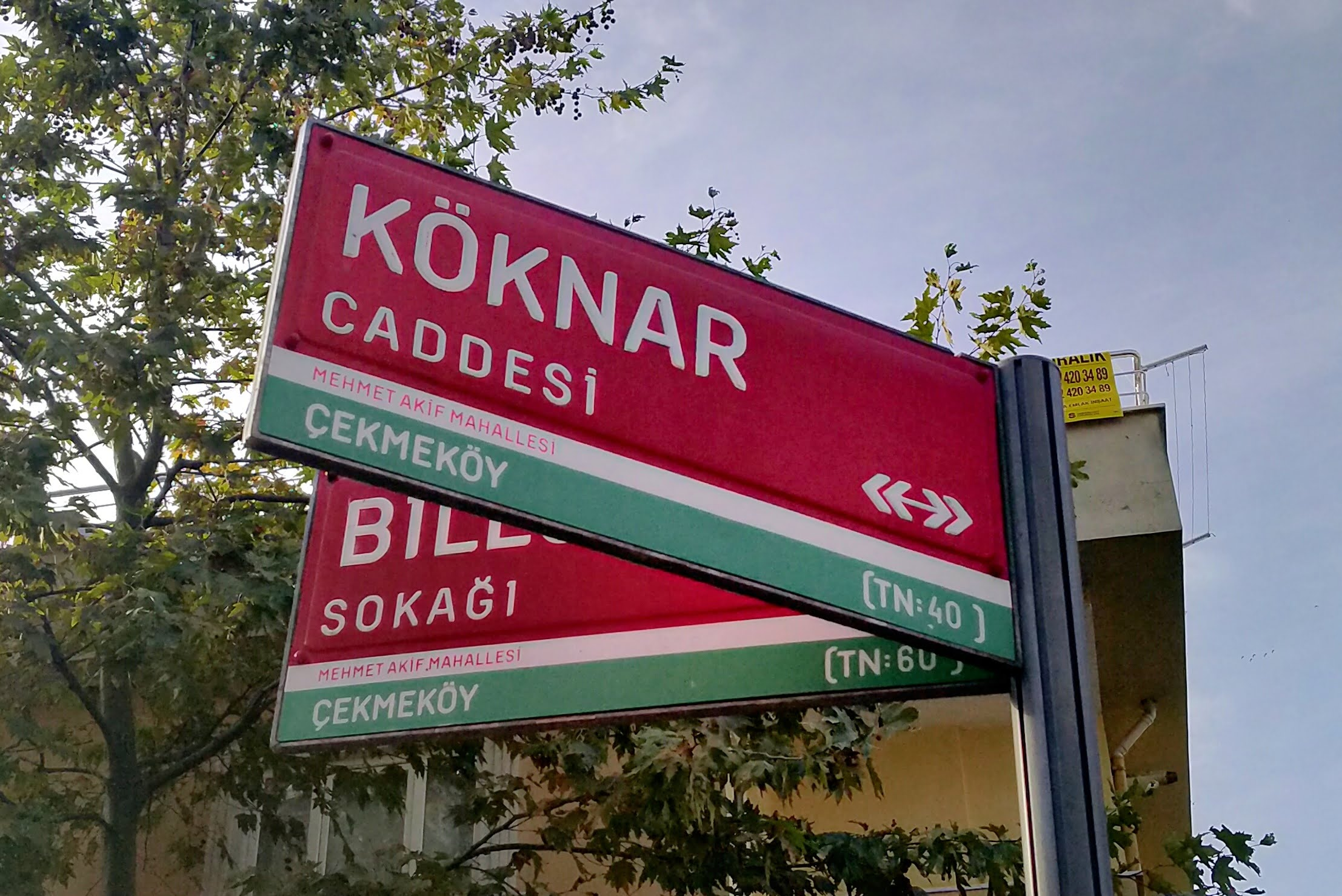 "A post with two signs on it, one partially covering the other. The signs  are colored red with a thin white strip, then a thick green strip at the  bottom. The front one says: ""KÖKNAR CADDESİ ↞↠, [on white strip] MEHMET AKİF MAHALLESİ, [on green  strip] ÇEKMEKÖY (TN:40 )"". The one behind says: ""BİL.."". SOKAĞI, [on white strip] MEHMET AKİF MAHALLESİ, [on green strip]  ÇEKMEKÖY (TN:60 )"""